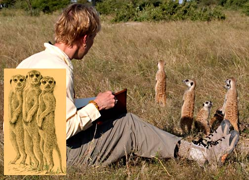 Becci-Crowe-and-Meerkats-for-blog